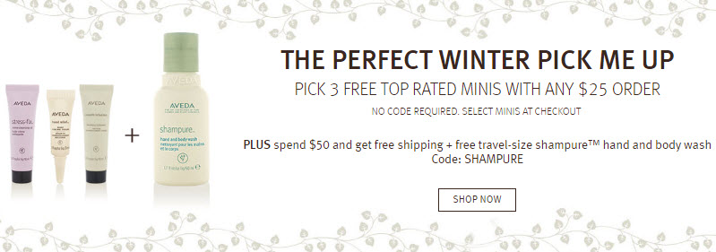 Receive a free 3-piece bonus gift with your $25 Aveda purchase