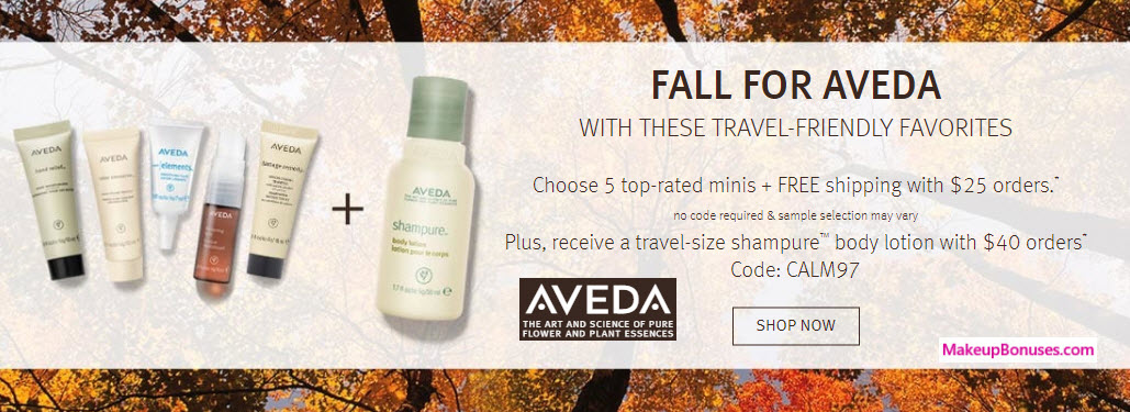 aveda free bonus gifts with purchase makeup bonuses. Black Bedroom Furniture Sets. Home Design Ideas
