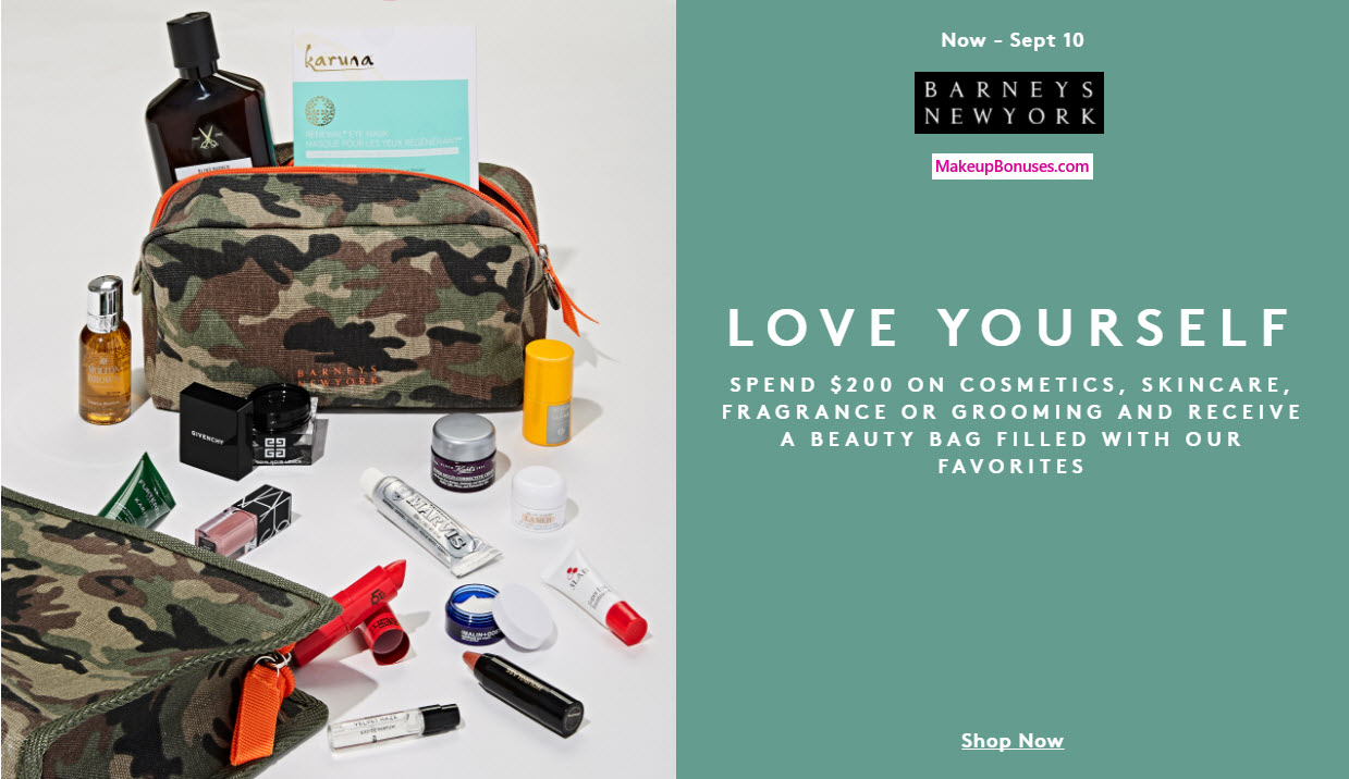 Receive your choice of 11-pc gift with your $200 Multi-Brand purchase